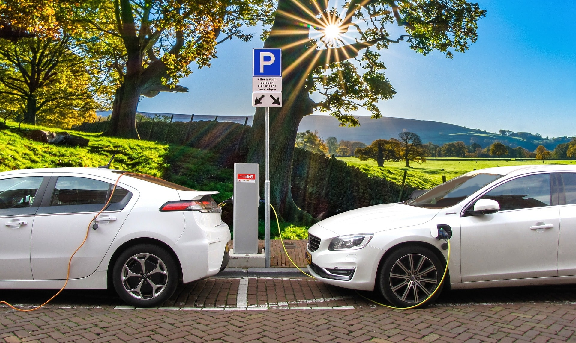 Can the advent of EVs result in lithium gaining more traction?